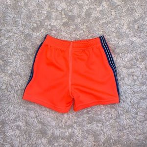 Carter's Baby Boy Shorts Size 12 Months